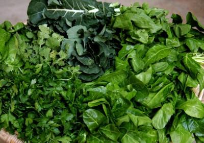 legumes-folhosos
